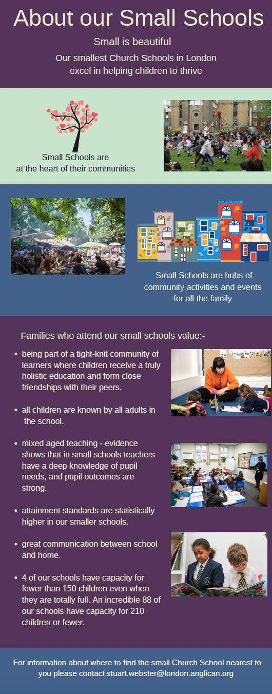 small school infographic